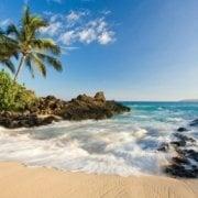 Hawaii Painting Trip
